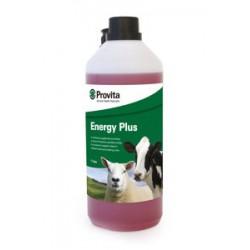 Provita Energy Plus 1L