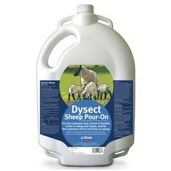 Dysect Pour-On Sheep