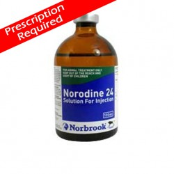 Norodine 24 Injection 100ml