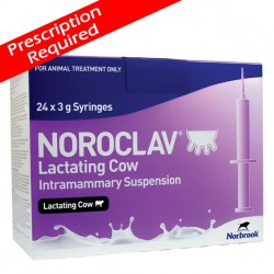 Noroclav LC Tubes 1x24