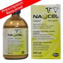 Naxcel Inj Cattle 100ml