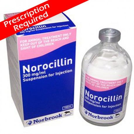 Norocillin 100ml