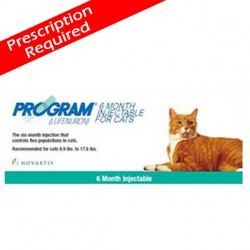 Program 80 Cat Injection