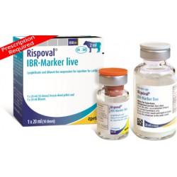 Rispoval IBR Marker Live